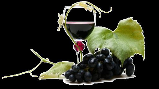 Sunset limousine winery tours